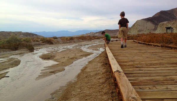 Two boys on a boardwalk, looking over the edge at a creek at the pupfish in the deserts of California.