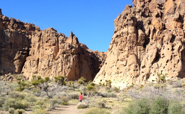 The rock canyon entrance on the Rings Trail