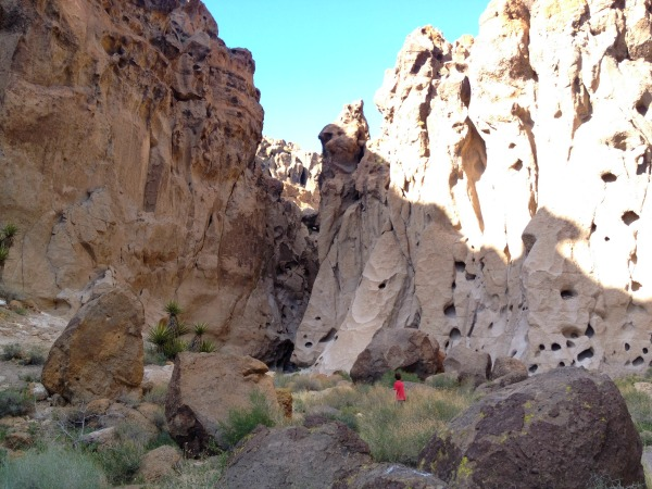 Rock canyon on the Rings Trail in Mojave Park