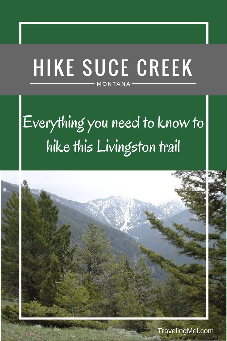 Hike Suce Creek in Livingston, Montana. Near Yellowstone National Park. All the info you need to get there and hike!