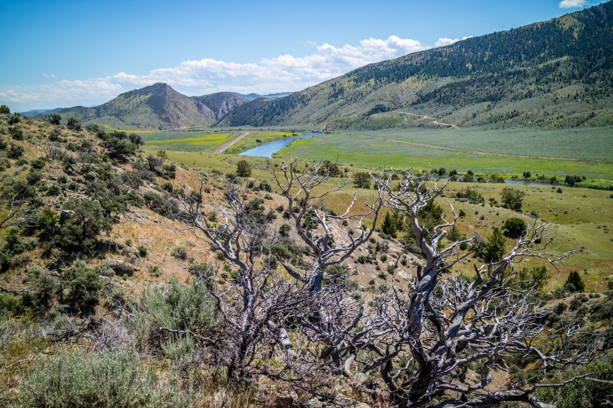 View of Jefferson River from Lewis and Clark Caverns State Park Montana