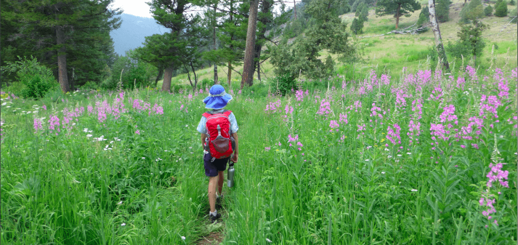 Backpacking the Yellowstone River Trail