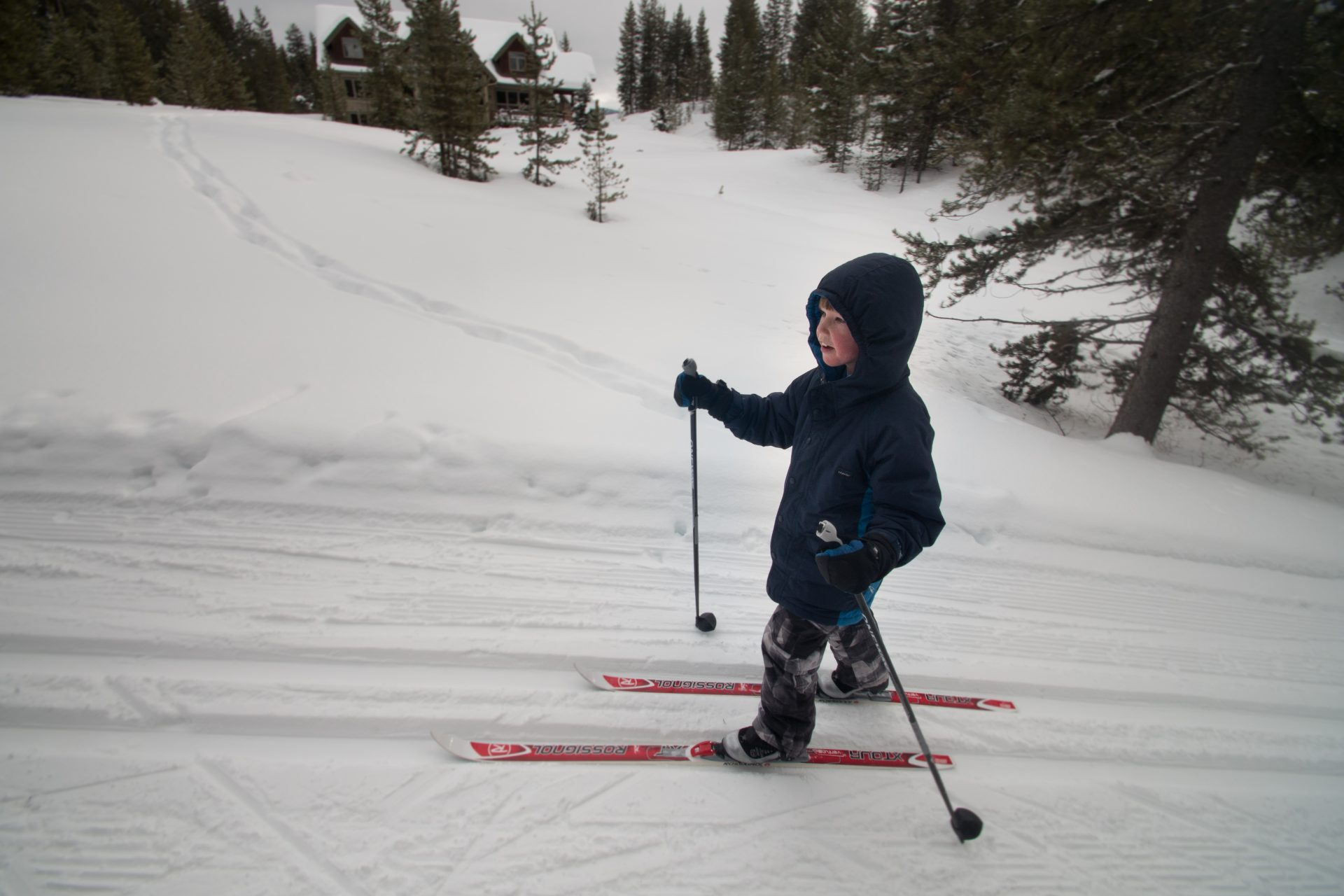 Nordic ski trails in montana