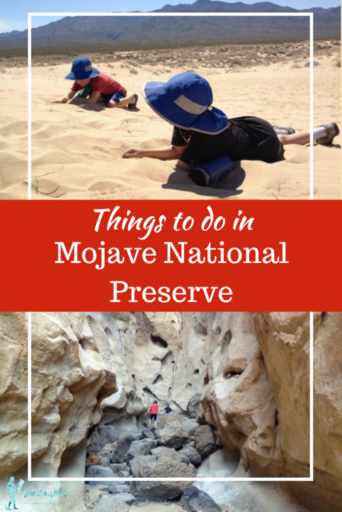 Have you visited Mojave National Preserve? Abundant wildflowers, exceptional views, rocks to climb on, evening campfires makes Mojave desert camping one of our favorite things to do. | Mojave National Preserve Hiking | Mojave National Preserve Camping | California | Desert Trips