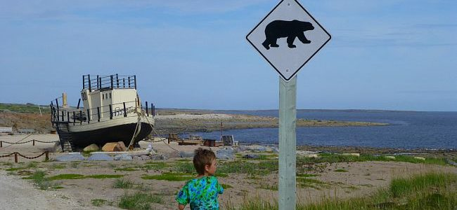 One Day in Churchill with Kids