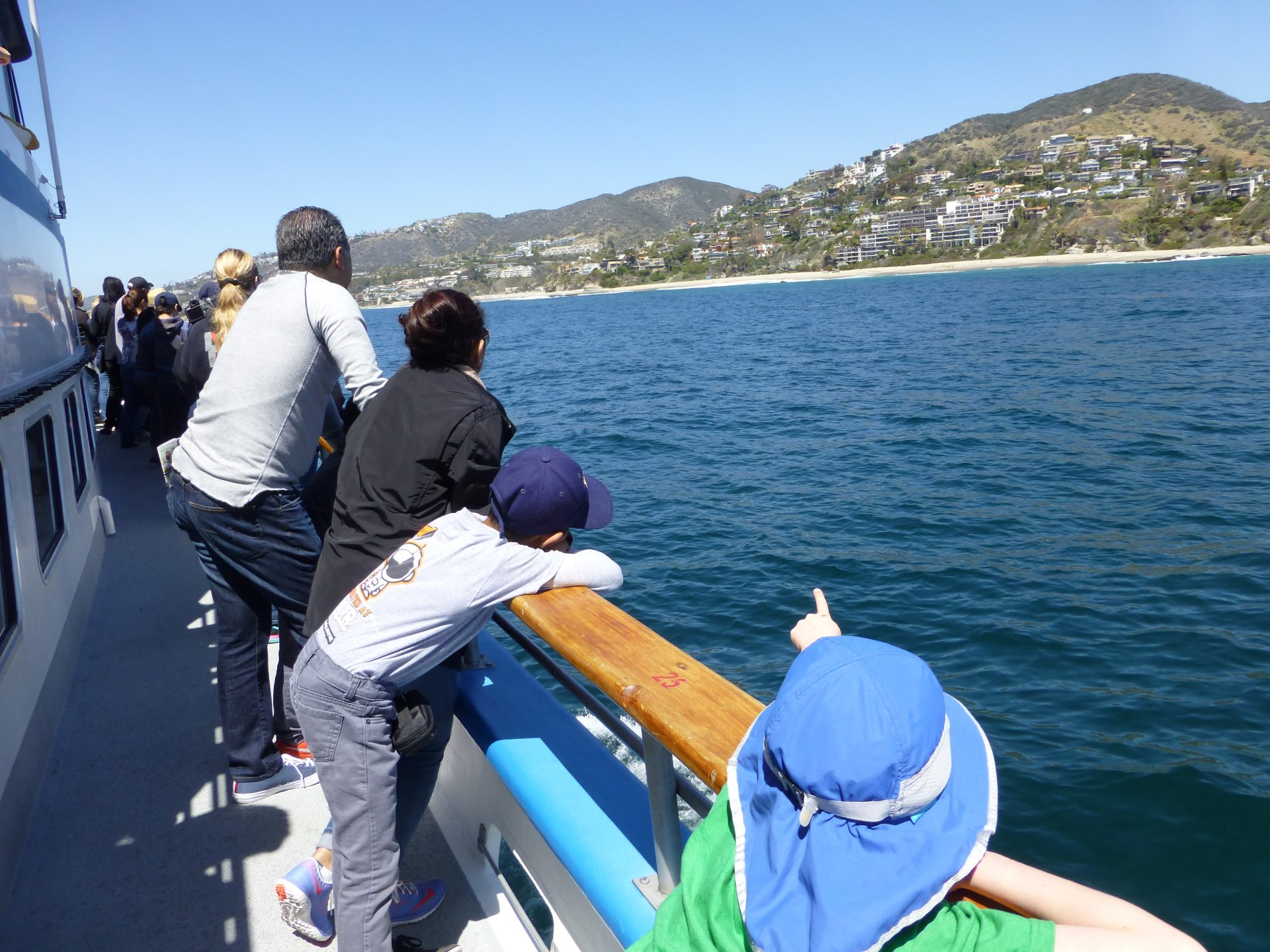 A boy points to a gray whale from the deck of the Dana Pride.