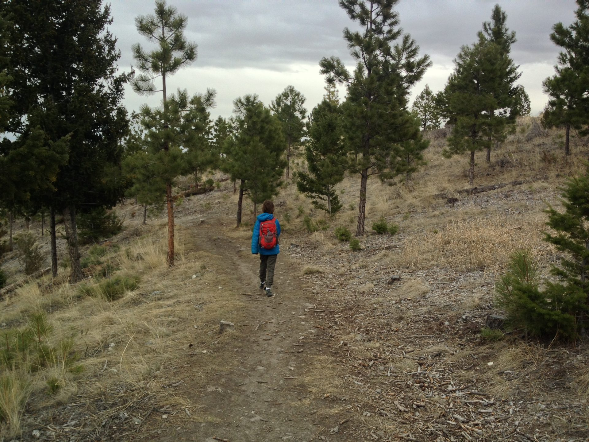 Helena Montana hiking and mountain biking trails