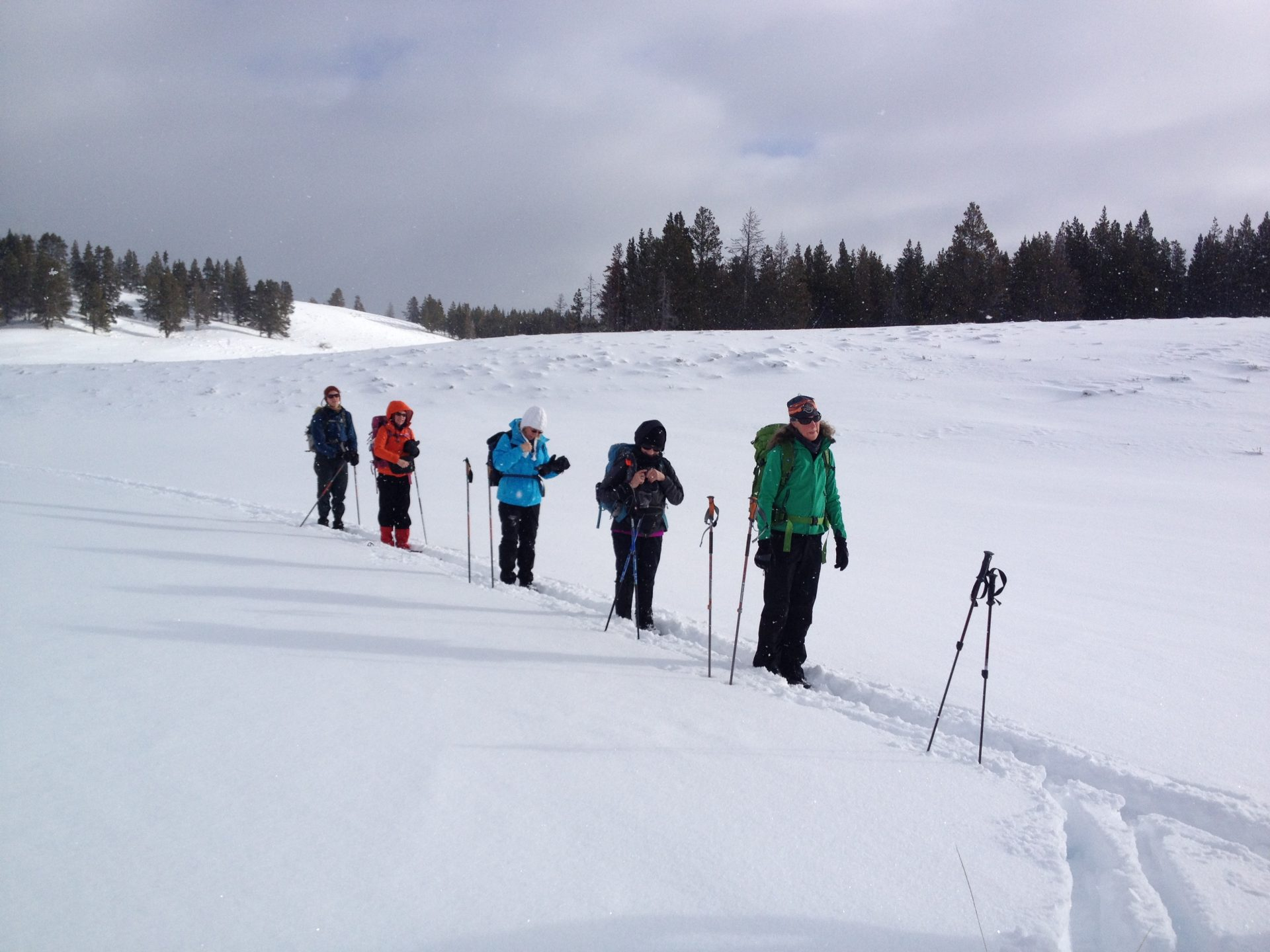Cross country skiing with Yellowstone Expeditions Yurt Camp