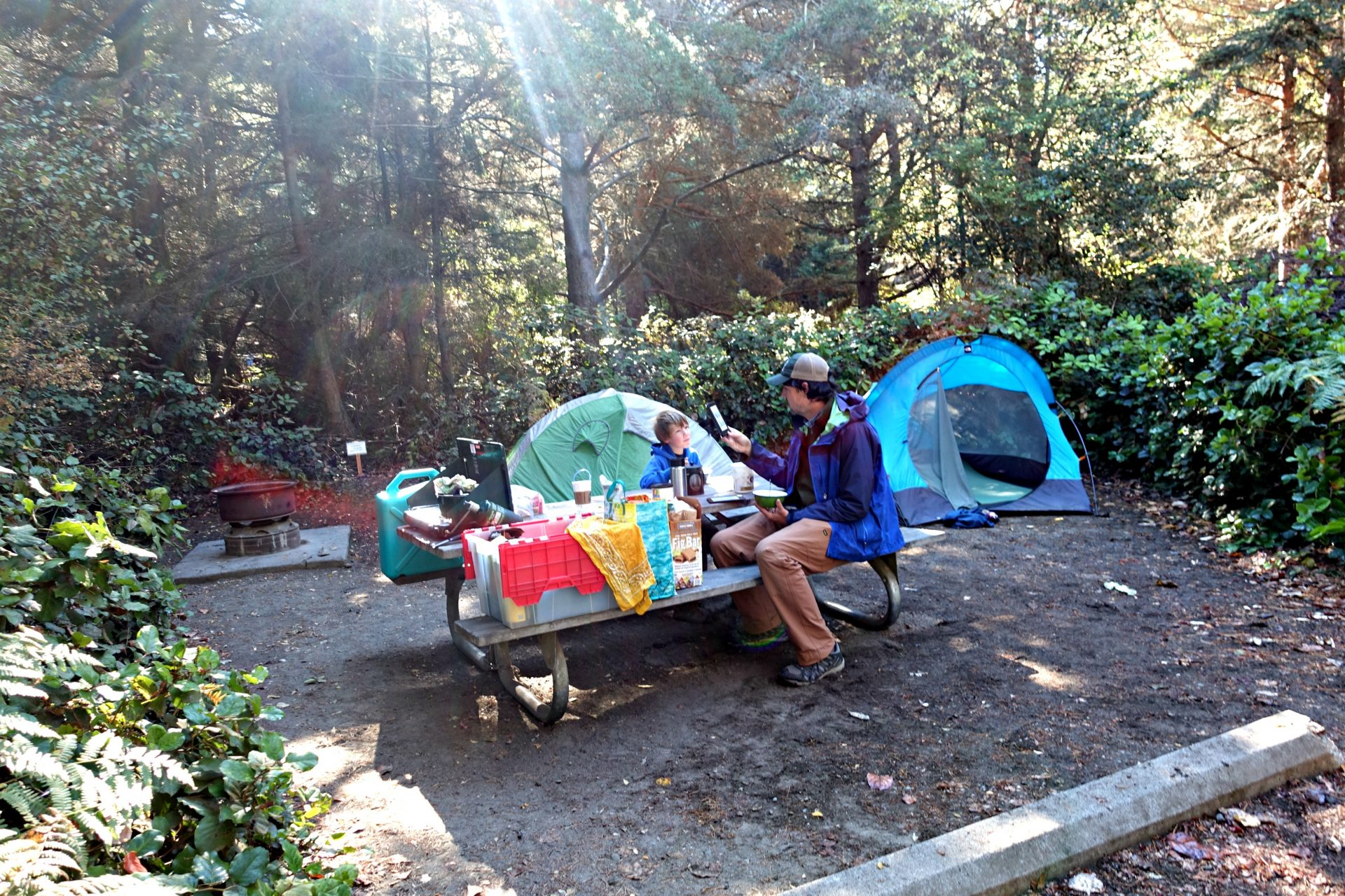 Best campsites in Dungeness Campground on the edge of the Puget Sound