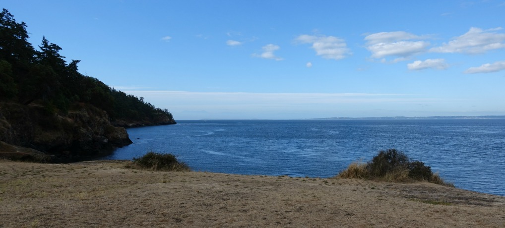 Campground on San Juan Island Where to see whales from campground