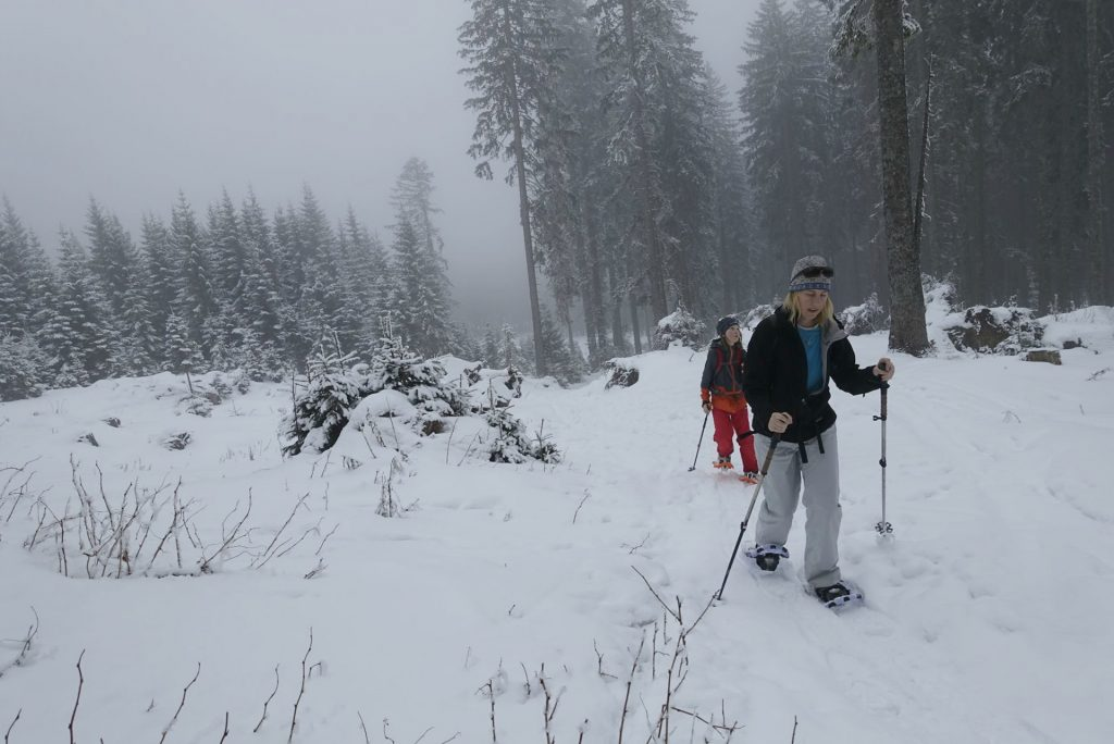 snowshoeing near Lake Bled Triglav National Park