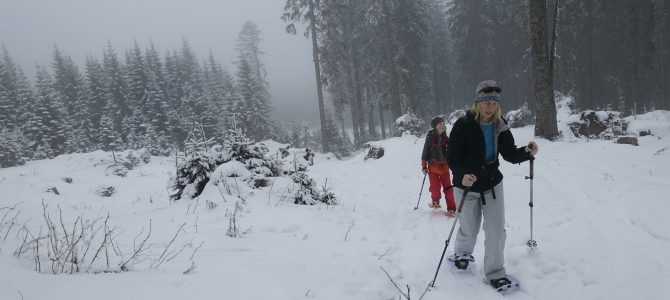 Snowshoeing: Are we there, yet?  (And Keen Boot review)