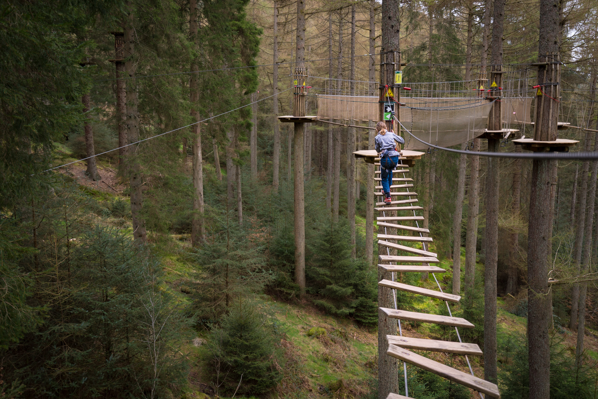 Go Ape in Aberfoyle, an adventure ropes course in Trossachs National Park