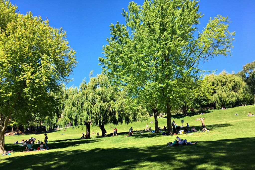 Parks in Aix-en-Provence are ideal for picnics