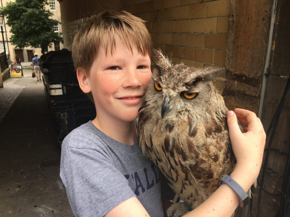 holding an owl is one of the things to do in Edinburgh with kids