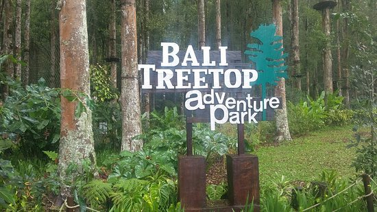 Bali Treetop Adventure Park fun for kids in Bali