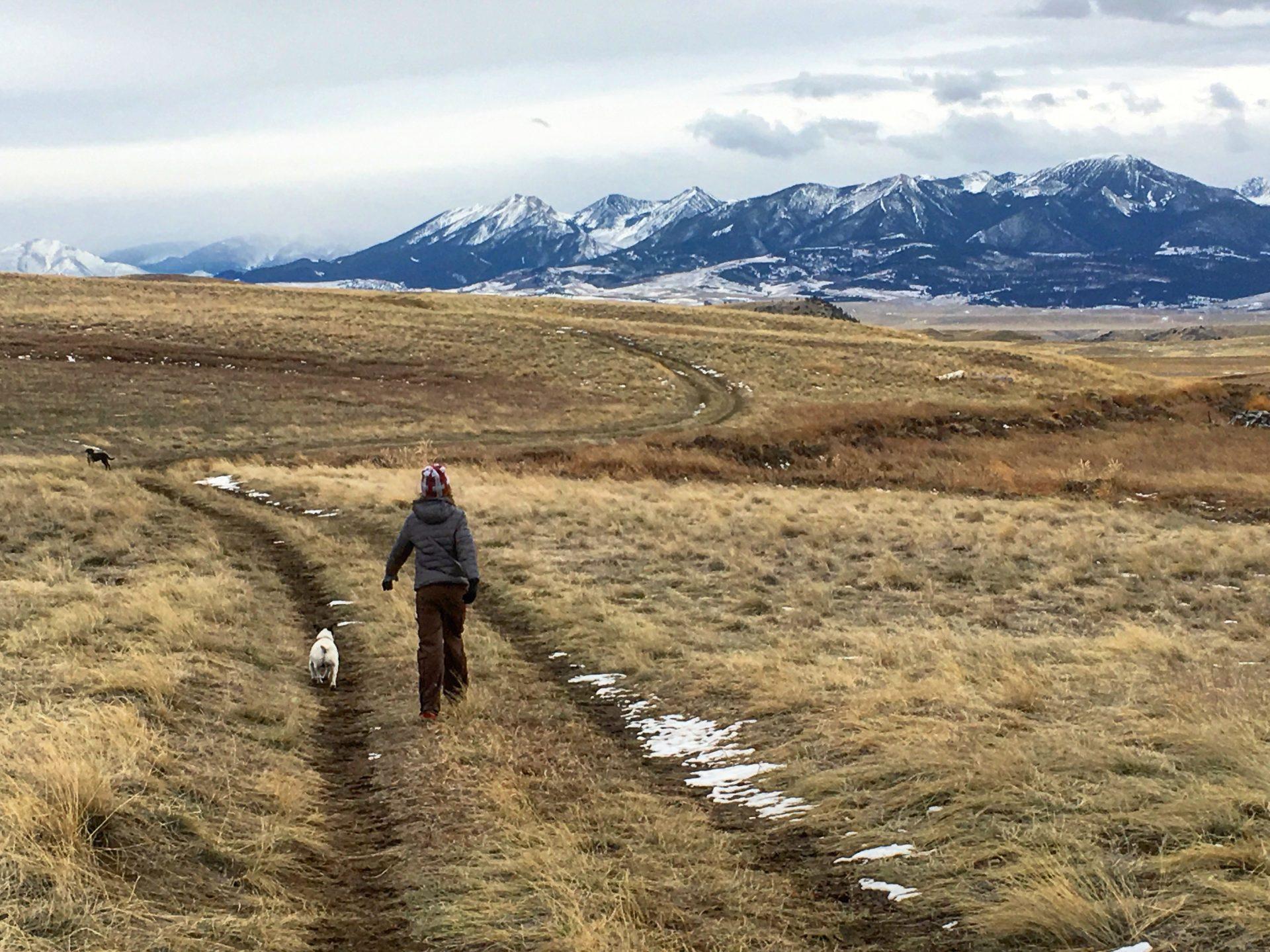 montana ranch with absaroka mountain view