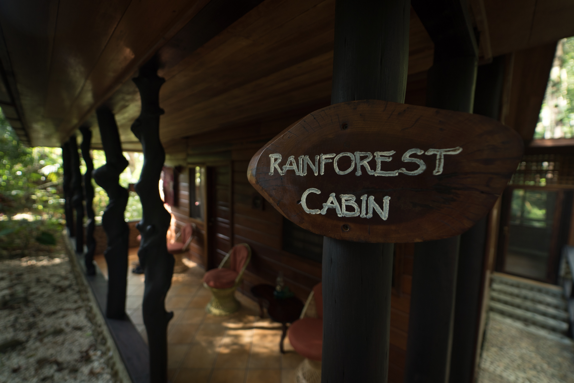 Rainforest cabin at Table Rock Jungle Lodge