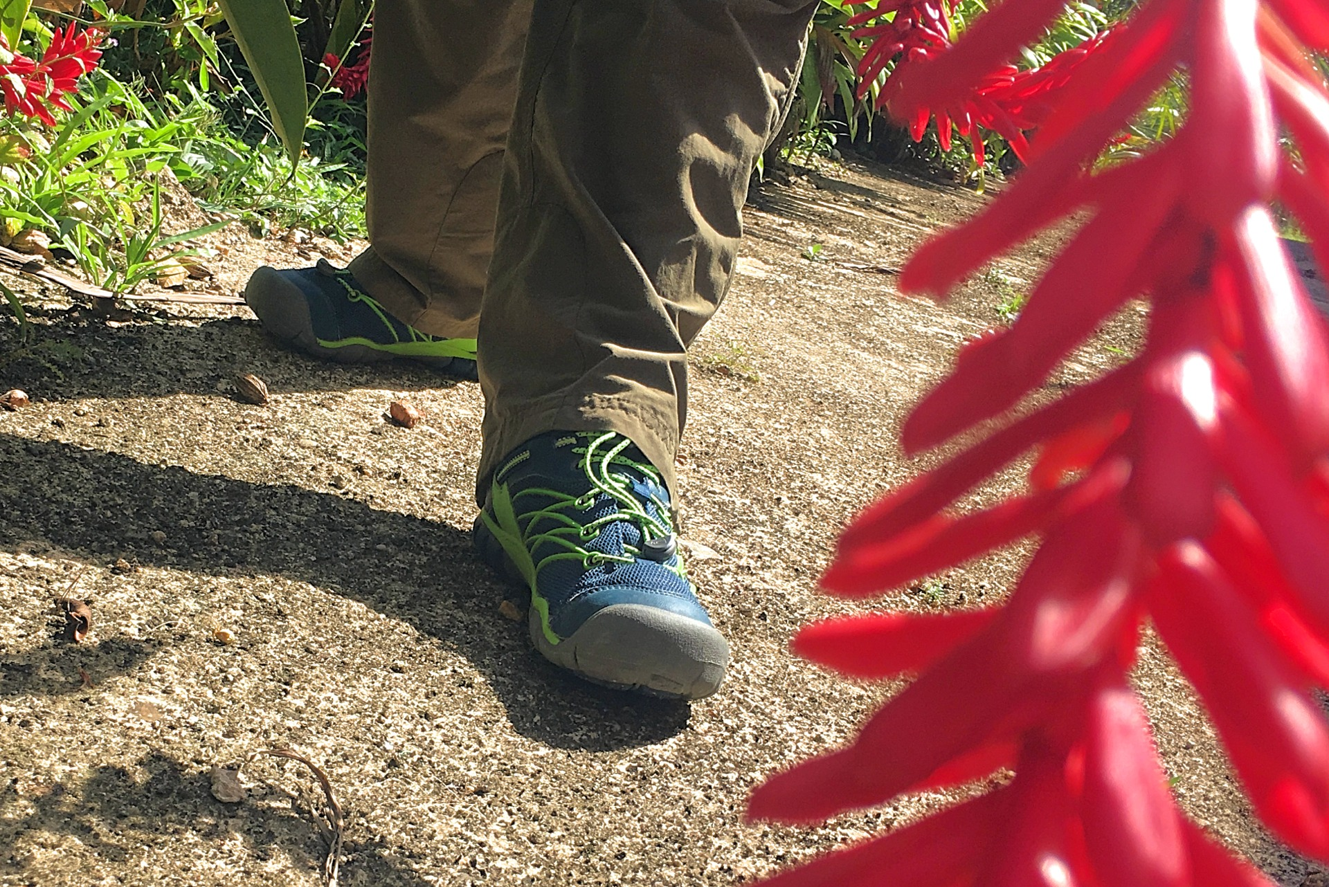 Keen Chandler CNX review kids sneakers