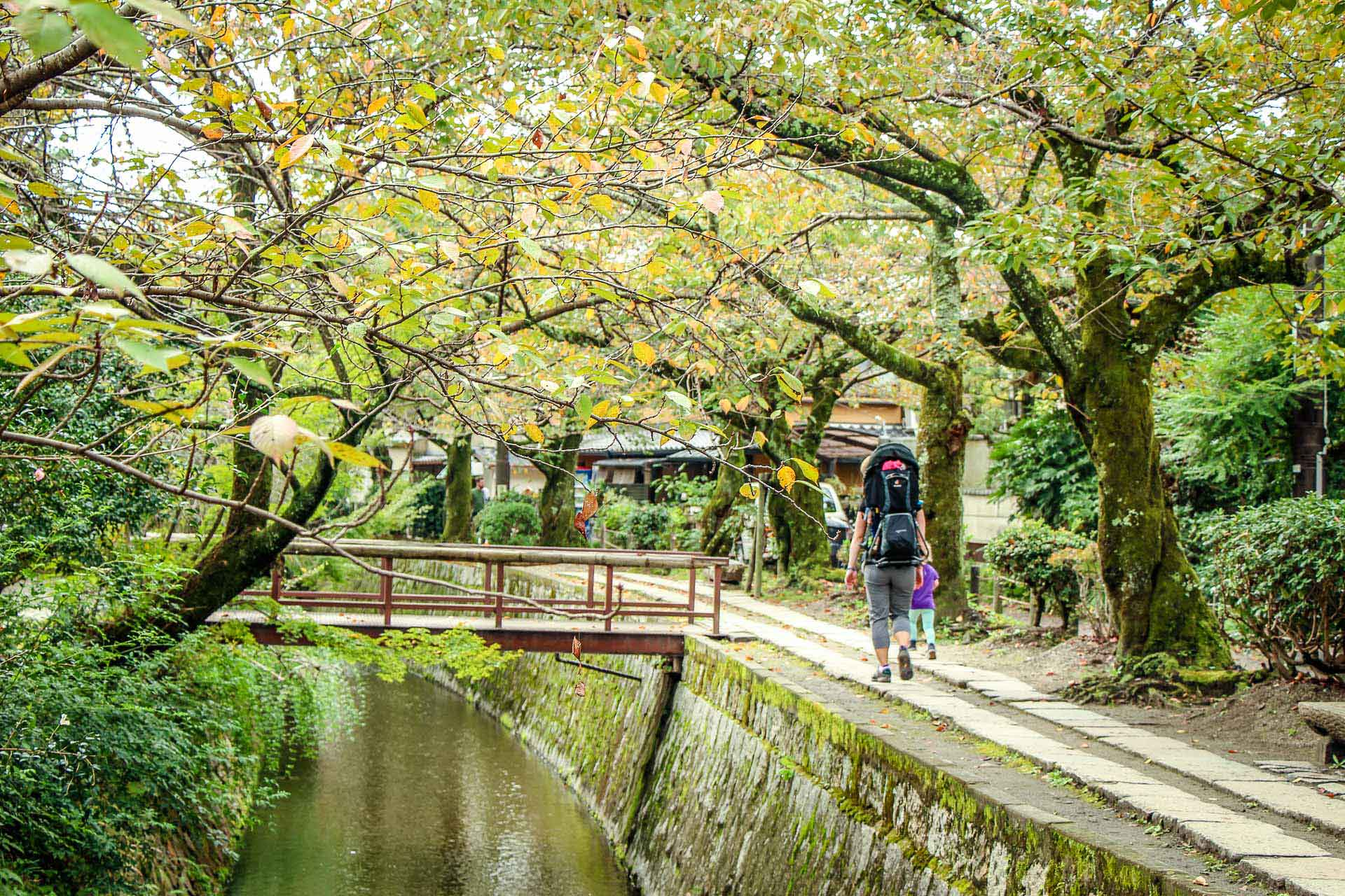 Philosopher's Path Kyoto, Japan Family Can Travel