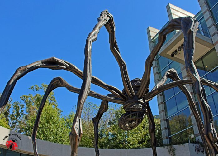 Standing under Maman, the 30-foot spider standing over the entrance of the Crystal Bridges Museum of Art in Bentonville, Arkansas, Louise immediately connected the artist to a similar piece guarding the front door of the Kemper Museum of Art back home in Kansas City. Photo by Sage Scott, the Everyday Wanderer