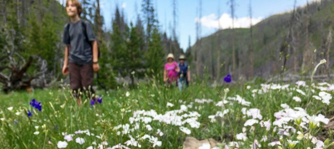 Family Trail Adventures: Best Bike Rides and Best Hikes in Montana