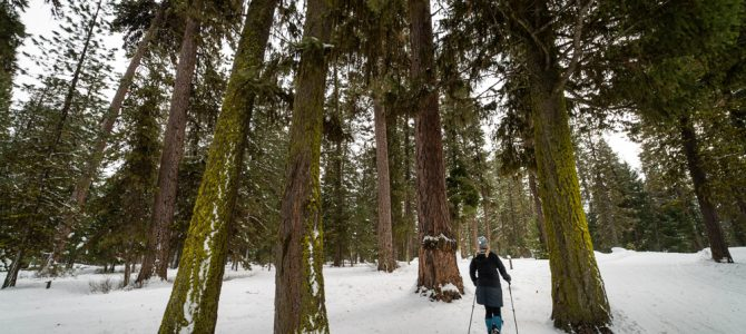 3 Day Snowshoeing and Hot Springing Itinerary — McCall, Idaho