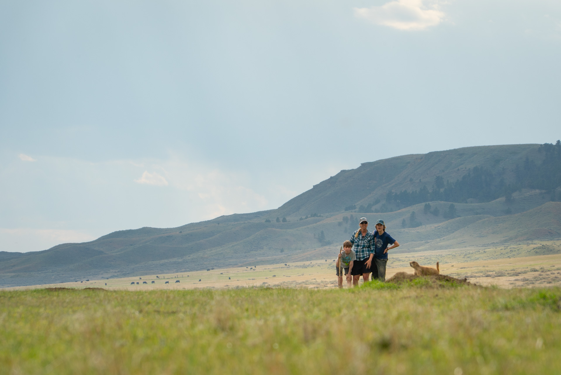three people watching a prairie dog on American Prairie Reserve