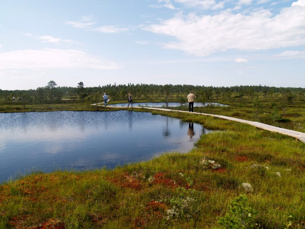 soomaa national park estonia