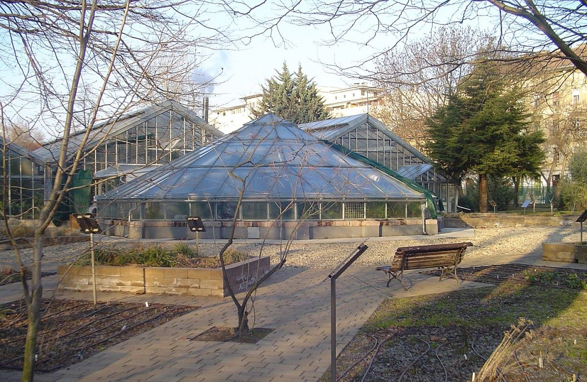 greenhouse at a botanical garden in Budapest