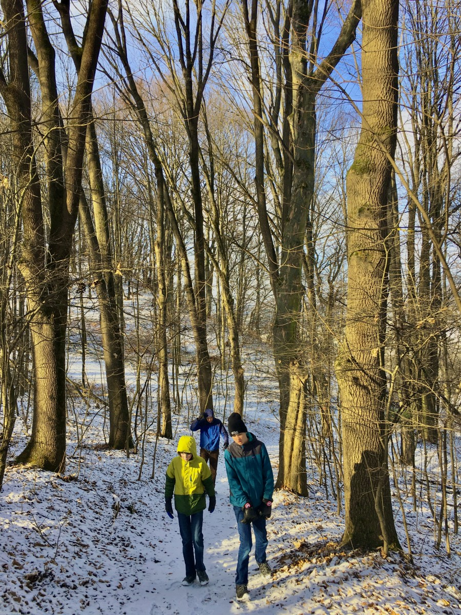 two boys walking on snow trail in trees