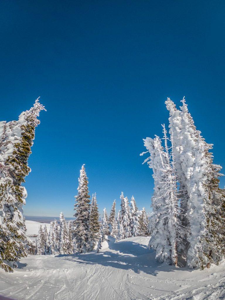 skiing in Idaho at Pomerlle