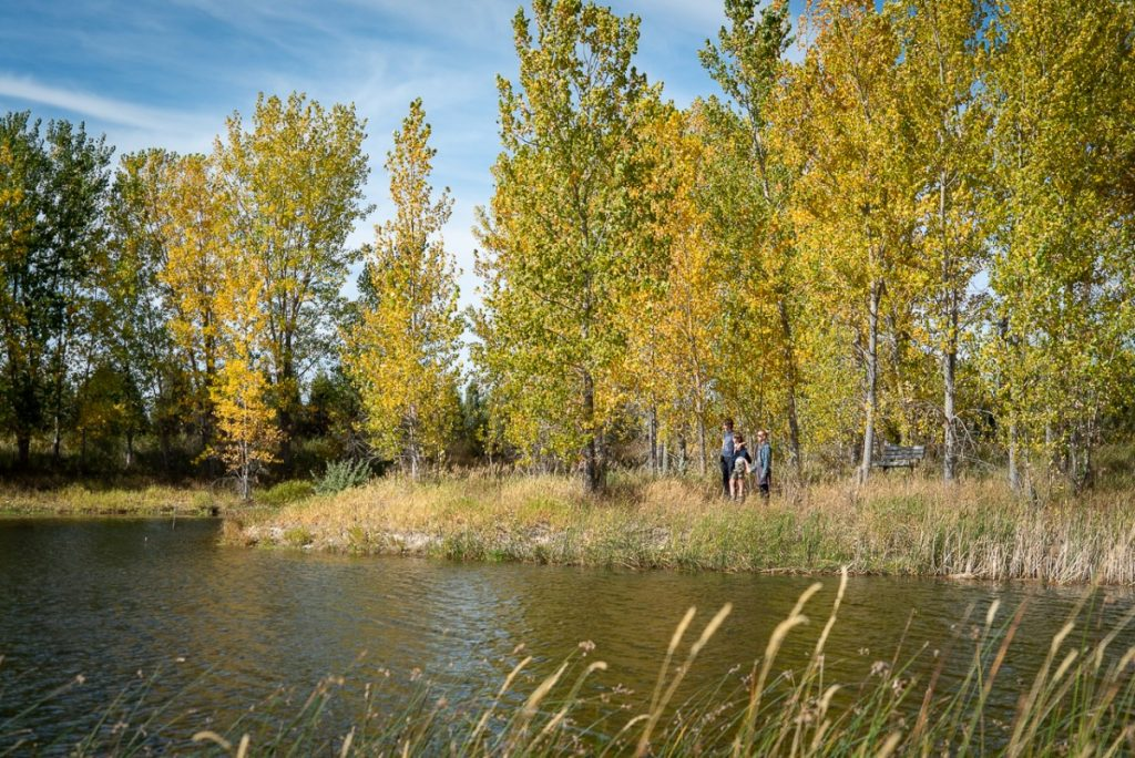 places to see fall colors in Montana Audubon center