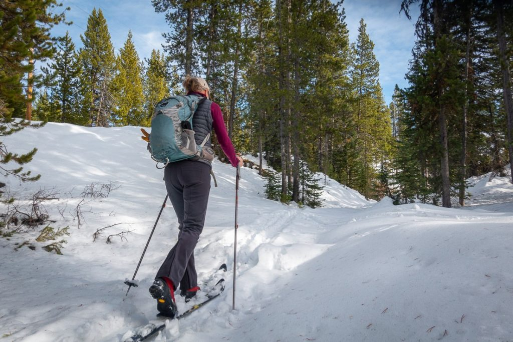 Woman cross country skiing in Colter Campground Beartooth Pass