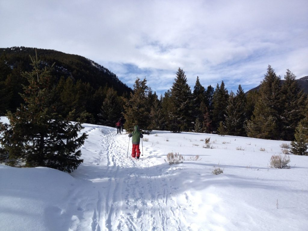Cross country skiing in Red Lodge Montana