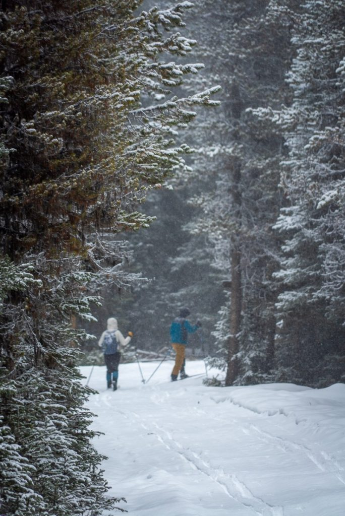 cross country skiing in Montana at Silver Crest Winter Recreation Area
