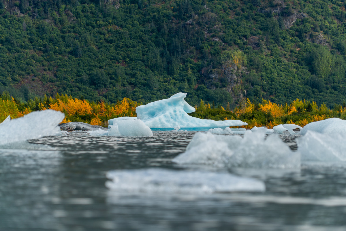 Icebergs floating in a lake in Alaska