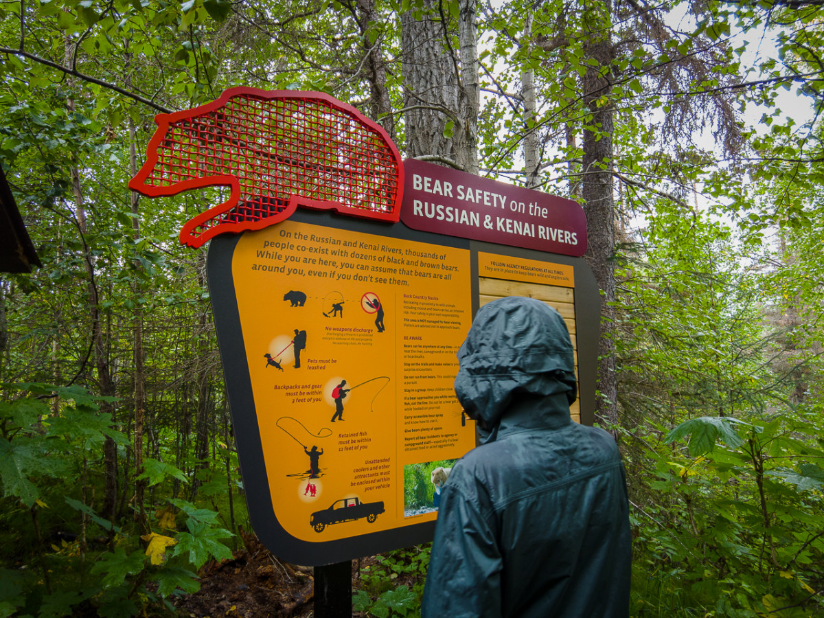When bear watching from Anchorage Alaska read signs like this one about bear safety