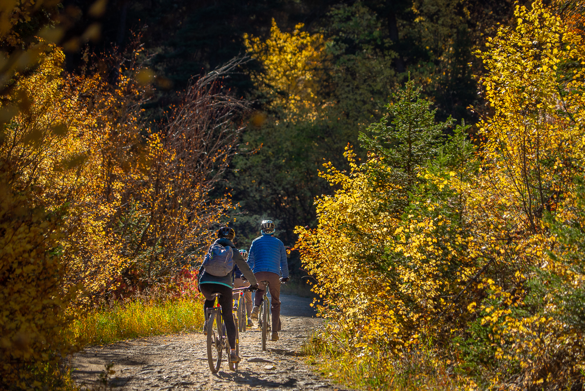 best place to visit in montana could be mountain biking through fall foliage near Belgrade