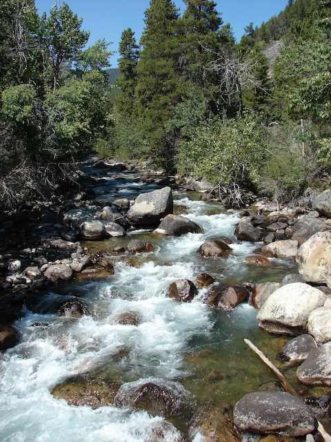 West Fork of Rock Creek